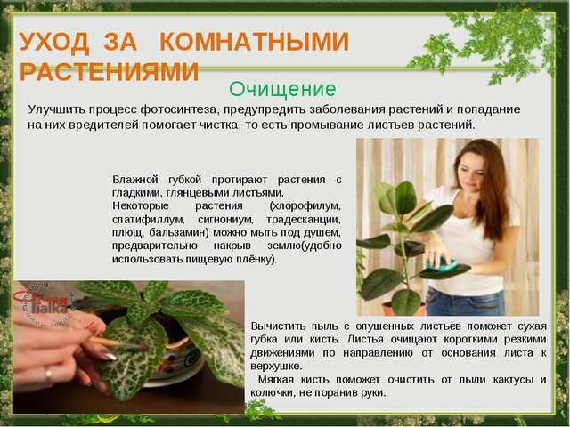 УХОД ЗА КОМНАТНЫМИ РАСТЕНИЯМИ Очищение Улучшить процесс фотосинтеза, предупре...