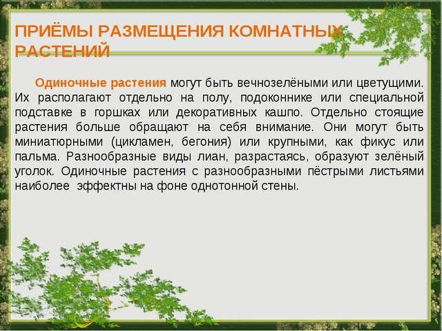 ПРИЁМЫ РАЗМЕЩЕНИЯ КОМНАТНЫХ РАСТЕНИЙ Одиночные растения могут быть вечнозелён...