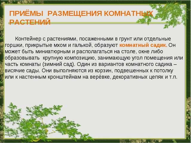 ПРИЁМЫ РАЗМЕЩЕНИЯ КОМНАТНЫХ РАСТЕНИЙ Контейнер с растениями, посаженными в гр...