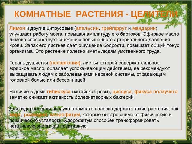 КОМНАТНЫЕ РАСТЕНИЯ - ЦЕЛИТЕЛИ Лимон и другие цитрусовые (апельсин, грейпфрут...