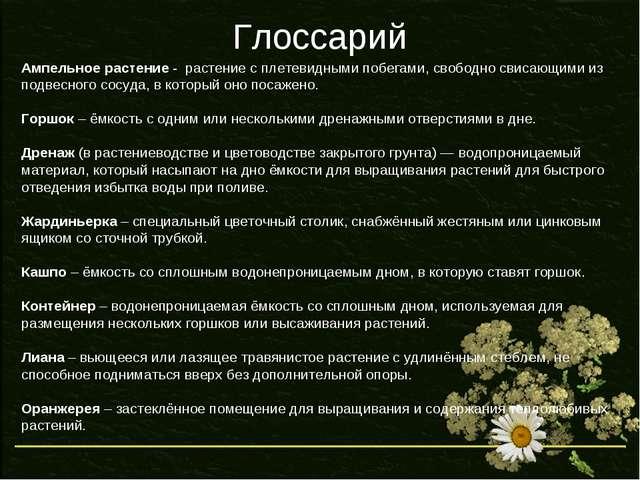 Глоссарий Ампельное растение - растение с плетевидными побегами, свободно сви...