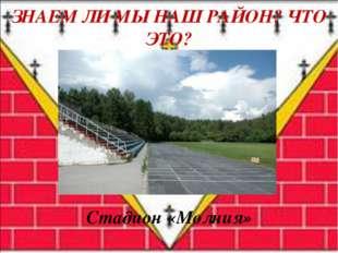 Стадион «Молния» ЗНАЕМ ЛИ МЫ НАШ РАЙОН? ЧТО ЭТО?