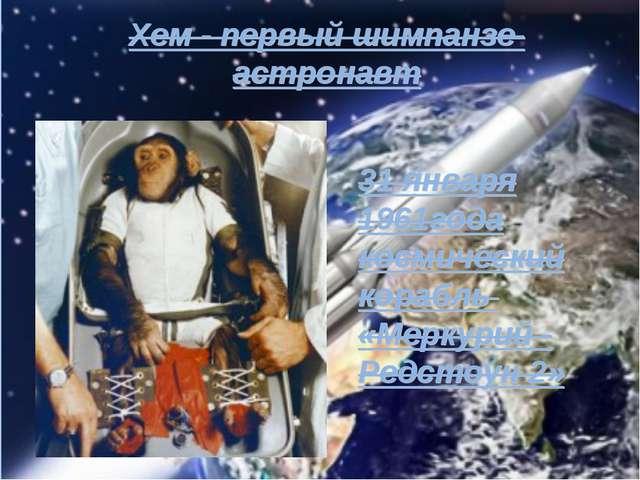 Хем - первый шимпанзе-астронавт 31 января 1961года космический корабль «Мерку...