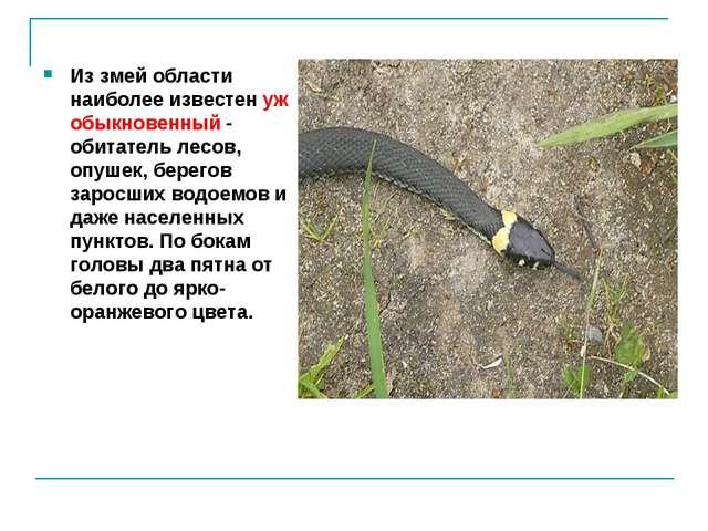 Из змей области наиболее известен уж обыкновенный - обитатель лесов, опушек,...