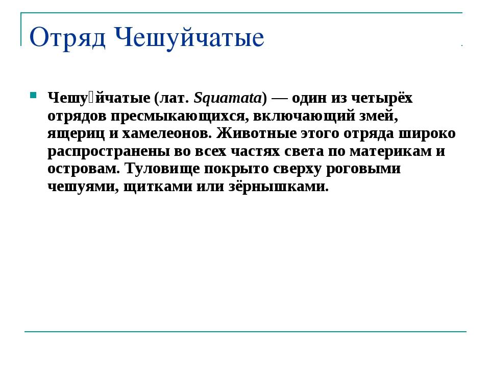 Отряд Чешуйчатые Чешу́йчатые (лат.Squamata)— один из четырёх отрядов пресмы...