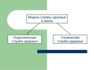 Модель службы здоровья в школе Педагогическая Служба здоровья Ученическая Слу