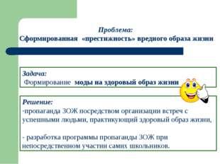 Решение: пропаганда ЗОЖ посредством организации встреч с успешными людьми, пр