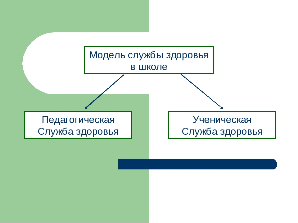 Модель службы здоровья в школе Педагогическая Служба здоровья Ученическая Слу...
