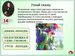 Колдовские чары злой королевы лишили их человеческого облика. Лишь раз в год