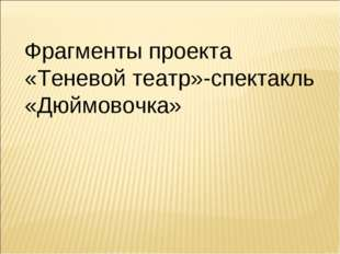 Фрагменты проекта «Теневой театр»-спектакль «Дюймовочка»