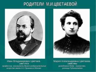 Иван Владимирович Цветаев, (1847-1913) профессор, основатель Музея изобразите