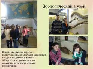 Зоологический музей Посещение музея с заранее подготовленными листами-задания