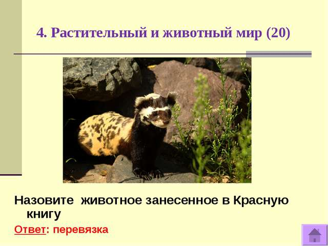 4. Растительный и животный мир (20) Назовите животное занесенное в Красную кн...