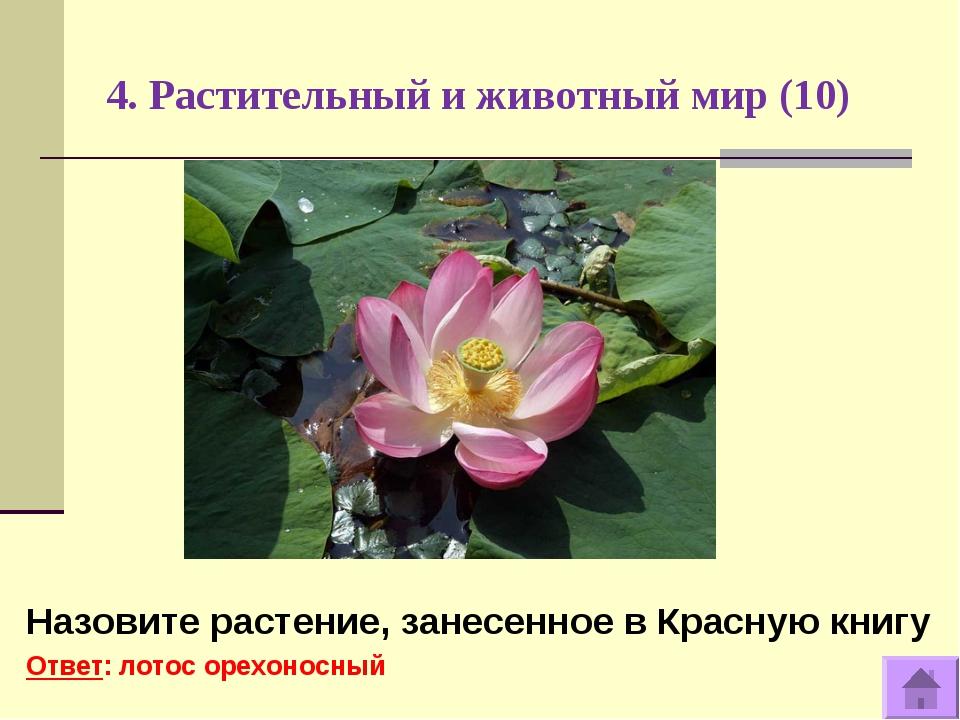4. Растительный и животный мир (10) Назовите растение, занесенное в Красную к...