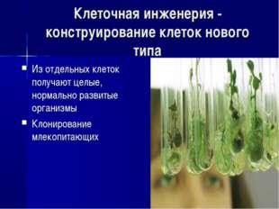 Клеточная инженерия - конструирование клеток нового типа Из отдельных клеток