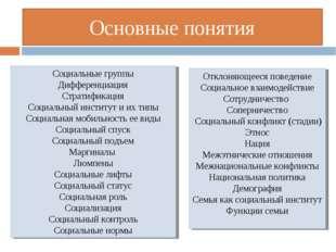 Основные понятия Социальные группы Дифференциация Стратификация Социальный ин