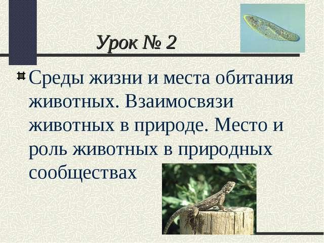 Урок № 2 Среды жизни и места обитания животных. Взаимосвязи животных в природ...