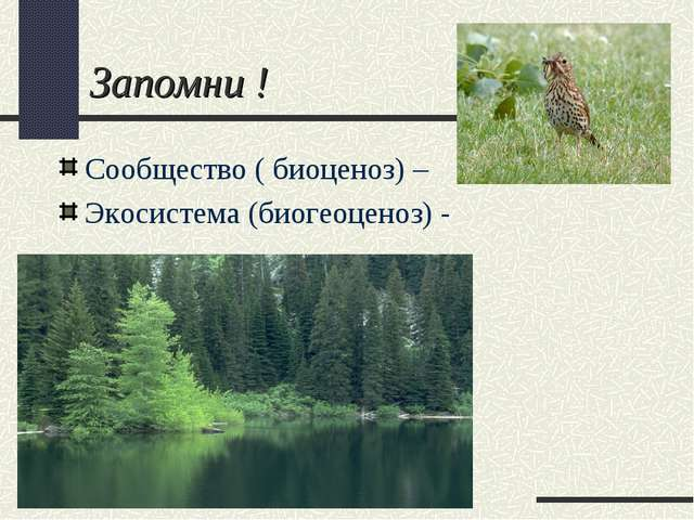 Запомни ! Сообщество ( биоценоз) – Экосистема (биогеоценоз) -