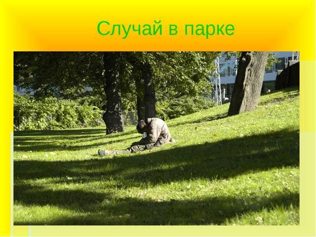 Случай в парке