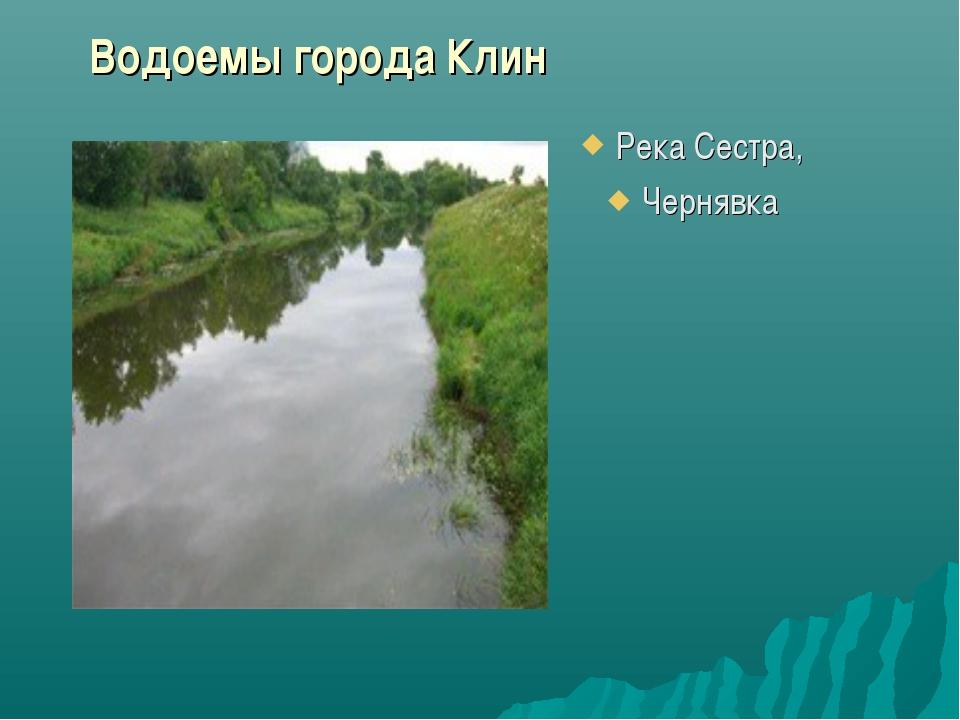 Река Сестра, Чернявка Водоемы города Клин