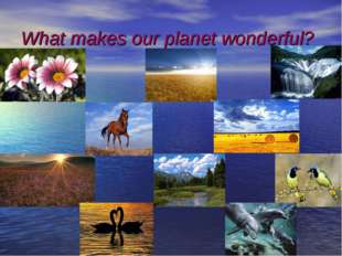 What makes our planet wonderful?