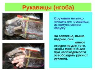 Рукавицы (нгоба) К рукавам наглухо пришивают рукавицы из камуса мехом наружу.