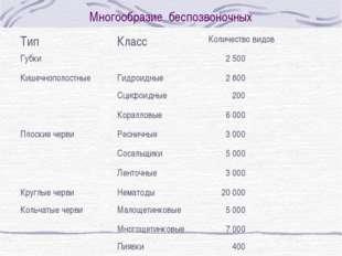 Многообразие беспозвоночных ТипКлассКоличество видов Губки 2 500 Кишечноп