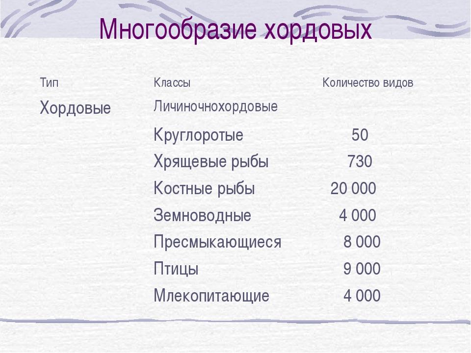 Многообразие хордовых ТипКлассыКоличество видов ХордовыеЛичиночнохордовые...