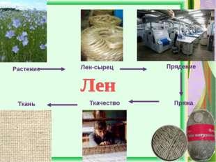 Растение Лен-сырец Прядение Пряжа Ткачество Ткань
