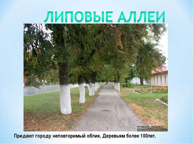 Придают городу неповторимый облик. Деревьям более 100лет.