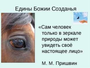 Едины Божии Созданья «Сам человек только в зеркале природы может увидеть сво