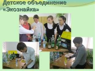 Детское объединение «Экознайка»