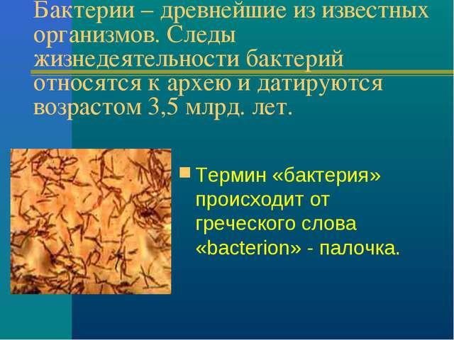 Бактерии – древнейшие из известных организмов. Следы жизнедеятельности бактер...