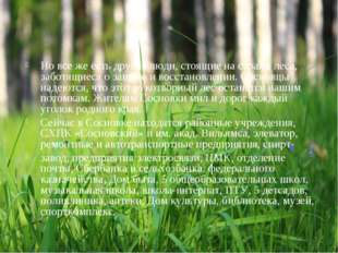 Но все же есть другие люди,стоящие на страже леса, заботящиеся о защите и во