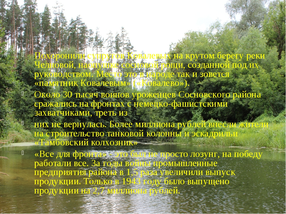 Похоронили супругов Ковалевыхна крутом берегу реки Челновой, наопушке соснов...