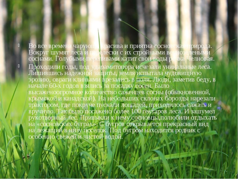 Во все времена чарующе красива и приятна сосновская природа. Вокруг шумят лес...