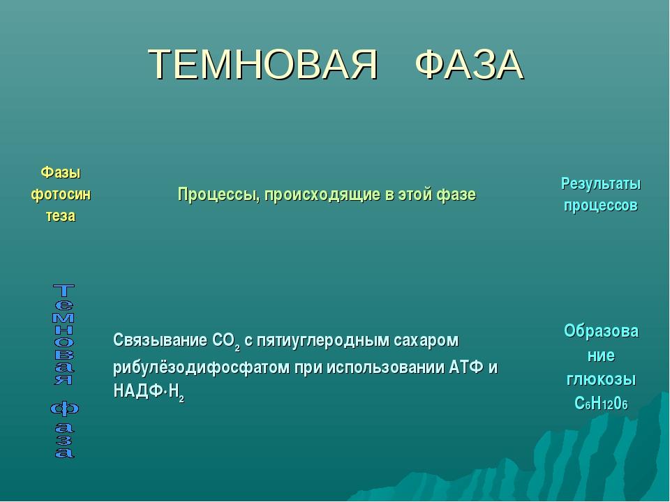 ТЕМНОВАЯ ФАЗА Фазы фотосин тезаПроцессы, происходящие в этой фазеРезультаты...