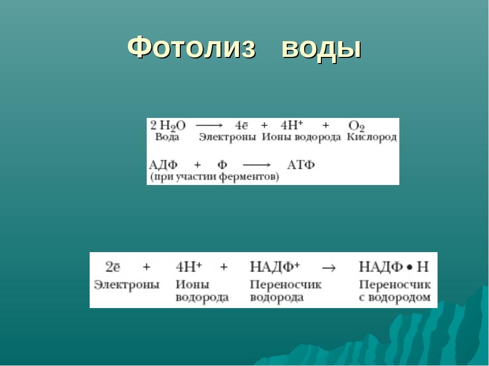 Фотолиз воды