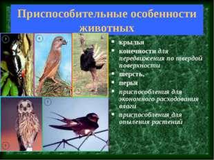 Приспособительные особенности животных крылья конечности для передвижения по
