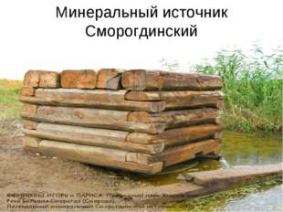 Минеральный источник Сморогдинский