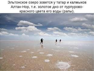 Эльтонское озеро зовется у татар и калмыков Алтан-Нор, т.е. золотое дно от пу