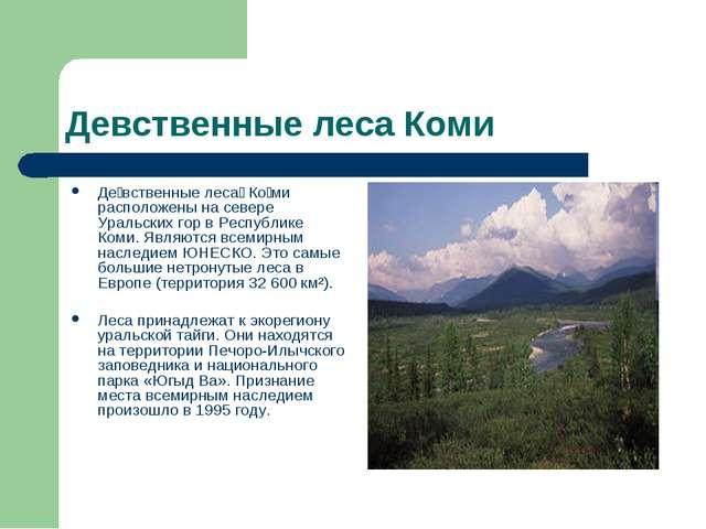 Девственные леса Коми Де́вственные леса́ Ко́ми расположены на севере Уральски...