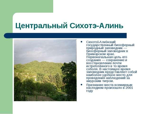 Центральный Сихотэ-Алинь Сихотэ́-Али́нский государственный биосферный природн...