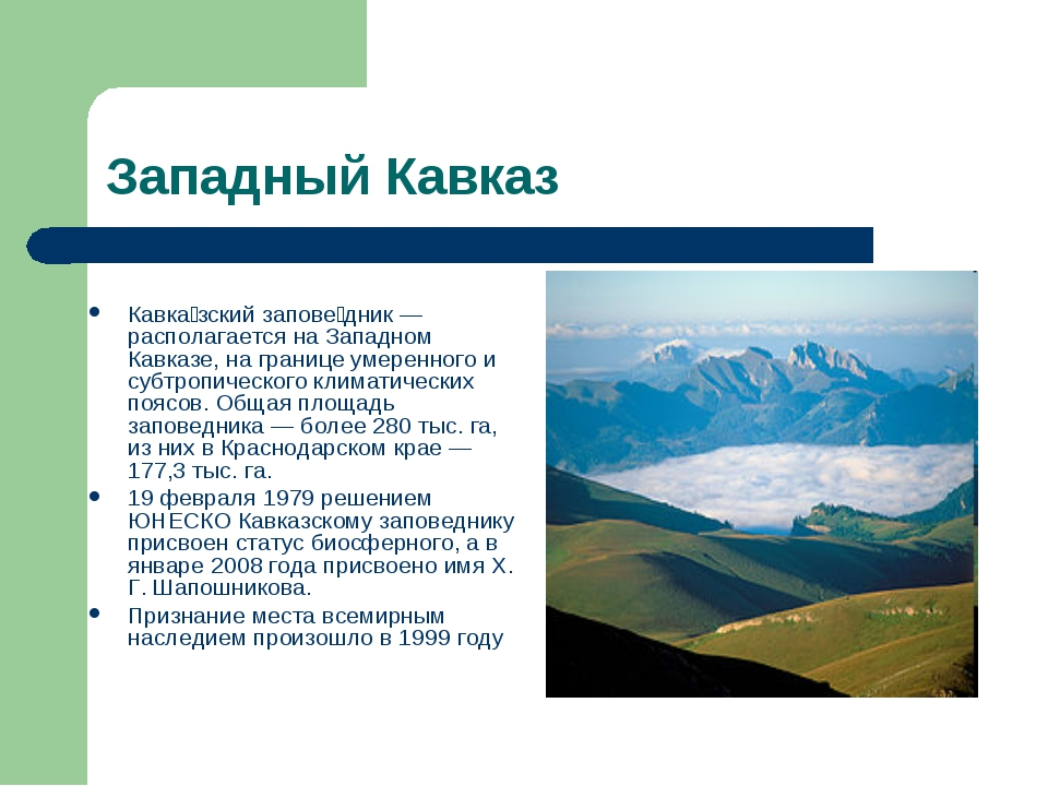 Западный Кавказ Кавка́зский запове́дник —располагается на Западном Кавказе, н...