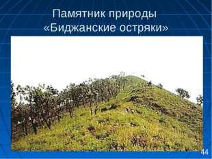 Памятник природы «Биджанские остряки» 44
