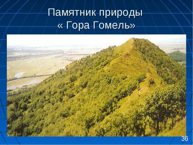 Памятник природы « Гора Гомель» 36