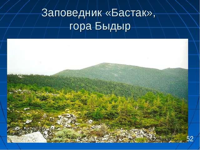 Заповедник «Бастак», гора Быдыр 52