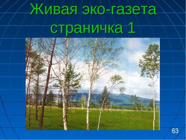 Живая эко-газета страничка 1 63