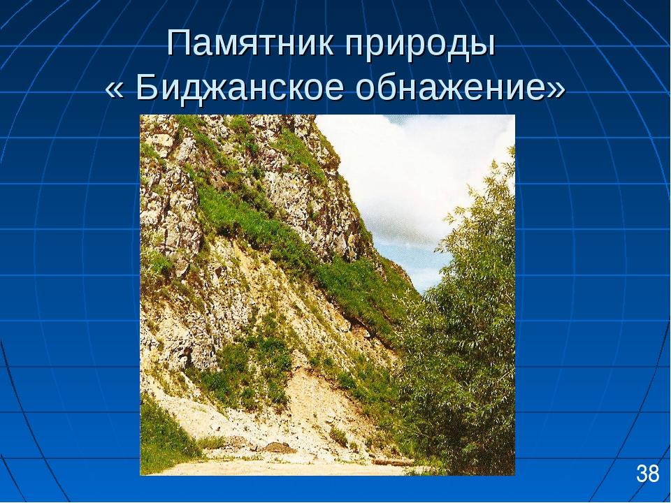 Памятник природы « Биджанское обнажение» 38