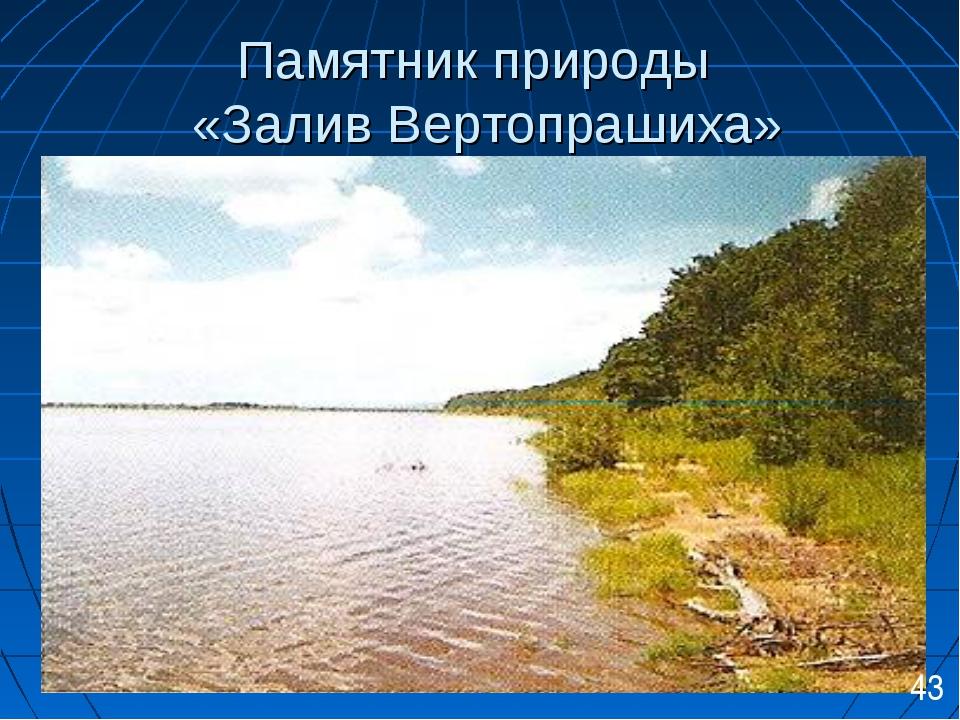 Памятник природы «Залив Вертопрашиха» 43